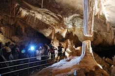 Jenolan Caves, in the Blue Mountains, Australia, is one of the world's most spectacular cave systems. See our photo gallery. Adventure Tours, Family Adventure, Adventure Time, Cave Images, Jenolan Caves, Cave Tours, Holiday Places, Holiday Destinations, Blue Mountain