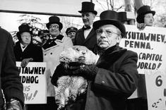 Feb First Groundhog Day.On this day in Groundhog Day, featuring a rodent meteorologist, is celebrated for the first time at Gobbler's Knob in Punxsutawney, Pennsylvania. Groundhog Pictures, Today In History, Black Lagoon, Groundhog Day, Just For Fun, Family History, Daddy, Creatures, News
