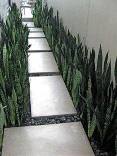 Incredible modern front yard landscaping ideas (39) #modernyardart #landscapingideas