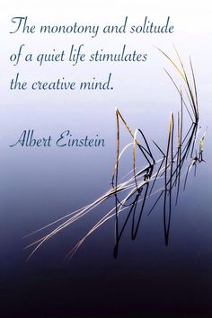 """The monotony and solitude of a quiet life stimulates the creative mind."" ~ Albert Einstein"