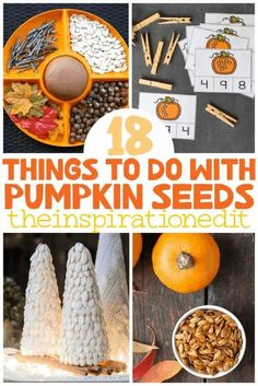 These awesome pumpkin seed ideas from the Inspiration Edit are great for kids and adults! You will find crafts to make, recipes, learning activities, and more. Learn all of the different ways you can use the seeds of your Halloween pumpkin! Try one of these DIY ideas this Fall. Pumpkin Seed Activities, Seed Activities For Kids, Pumpkin Seed Crafts, Seed Crafts For Kids, Autumn Crafts, Diy Ideas, Craft Ideas, Seeds, Simple Crafts