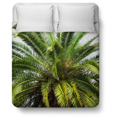 Date Palm Duvet Cover, Beach Green Tropical Style Palm Tree Bedding... (555 ILS) ❤ liked on Polyvore featuring home, bed & bath, bedding, duvet covers, palm tree, green twin bedding, twin bedding, king palm, twin bed linens and king size bed linen