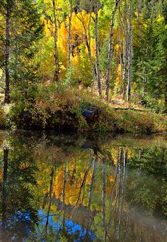 Major Creek, Sangre De Cristo Mountains; photo by Stan Rose.       This could be somewhere in the Colorado mountains! - Beautiful