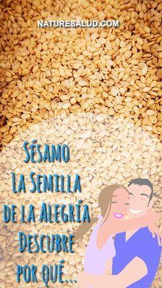 El sésamo la semilla o ajonjolí es una nutritiva semilla de delicioso sabor exótico que combina muy bien tanto con platos dulces como salados. Al sésamo se le llama la semilla de la alegría porque se ha observado que su consumo ayuda a combatir el estrés. ¿A qué se debe?