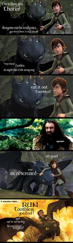 How to Train Your Dragon mixed with the Hobbit? Who would have thought? Certainly not Hiccup....because he would have seen Thorin's wrath coming.