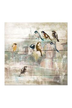 Pretty Birds Canvas Art