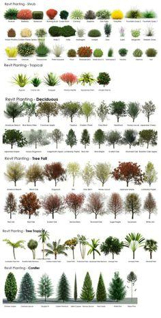 Very helpful in choosing plants for landscaping