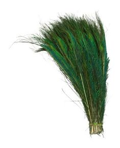 """KAYSO 100 Piece Peacock Swords Natural Feathers, 10 to 14"""" KAYSO http://www.amazon.com/dp/B00BMU0RPU/ref=cm_sw_r_pi_dp_nceEvb0H69V97"""