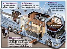 A palace on wheels: Inside Zara Phillips's horse box complete with double bed and granite-top kitchen that's fit for a princess Horse Stalls, Horse Barns, Horses, Dressage, Horse Transport, Equestrian Stables, Olympic Equestrian, Horse Training Tips, Horse Tips