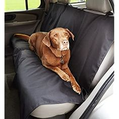 Amazon.com: DakPets Dog Car Seat Covers - Pet Car Seat Cover Protector – Waterproof, Scratch Proof, Heavy Duty and Nonslip Pet Bench Seat Cover - Middle Seat Belt Capable for Cars, Trucks and SUVs: Automotive Bench Seat Covers, Pet Car Seat Covers, Dog Car Seats, Best Puppies, Cool Dog Beds, Banquette, Big Dogs, Back Home, Pets
