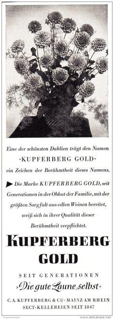 Original-Werbung/ Anzeige 1960 er Jahre - KUPFERBERG GOLD SEKT / DAHLIEN - ca. 60 x 200 mm