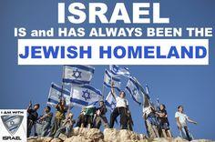 israel_shield (@israel_shield) | Twitter