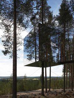 鏡のツリーハウス3
