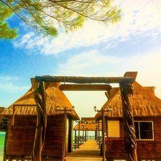 Isla Aguada. #Campeche #México #Turismo #Ecoturismo #travel #Aventura