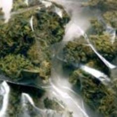 STF inicia julgamento sobre drogas