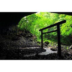キャプション→「神話の源流へ。」というキャッチコピーと共に宮崎のポスターにもなっている、「天安河原」に再度行ってきました〜この日は雨で、人も少なく神秘性が以前見た時よりも増してました八百萬の神々が集まって天照大神にお出まし頂く為の相談をした地と言われています。 #日本#宮崎#高千穂#shrine #torii #風景#天安河原#鳥居#神話#森#team_jp_ #ig_japan #japan #miyazaki #takachiho ユーザー→mizoguchi033 場所→天安河原