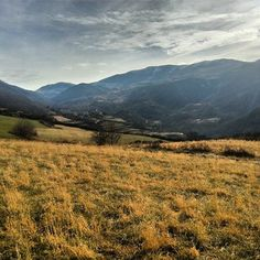 Vall de Ribes BTT: Ribes - Pardines - Ribesaltes - Les Vinyes - Ribes