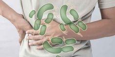 Najčešći uzročnici trovanja hranom susalmonele, kojih je poznato više od 500 različitih tipova, a proširene su među životinjama koje čovjeku slu...