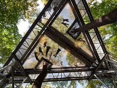 Community hammock   The Morris Arboretum at the University of Pennsylvania hosts to modern tree house resting 50 feet above the forest floor.  Tree Adventure is a sprawling, 450′ walkway suspended in the canopy that gives its visitors a birds-eye view of the forest below.
