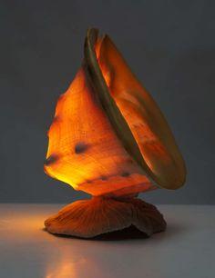 Beautiful Shell Table Lamp image 10
