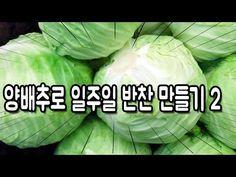 양배추로 일주일 반찬 만들기 2탄 : 양배추 요리 2탄 / Cabbage |요알남 Mingstar - YouTube Bread Recipes, Diet Recipes, Cooking Recipes, Instant Pot Pressure Cooker, Korean Food, Easy Cooking, Food Plating, Side Dishes, Cabbage
