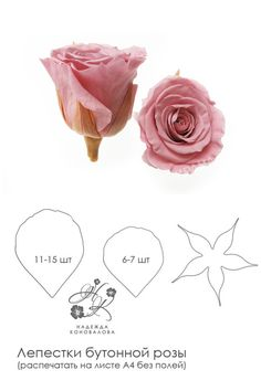1 million+ Stunning Free Images to Use Anywhere Wafer Paper Flowers, Paper Flowers Craft, Tissue Paper Flowers, Paper Roses, Flower Crafts, Diy Flowers, Flower Garlands, Flower Petals, Hand Flowers