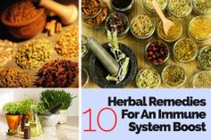 2 10 Herbal Remedies For An Immune System Boost