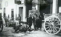 Χαλάνδρι 1928 Old Photos, Greece, Travel, Antique Photos, Greece Country, Trips, Old Pictures, Traveling, Old Photographs