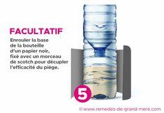 encore plus d'efficacité, disséminez plusieurs Voss Bottle, Water Bottle, Useful Life Hacks, Blog, How To Make, Moment, Fruit, Garden, Ideas