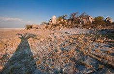 Baobab Silhouette--Amazing. makgadikgadi. Mark Dumbleton.