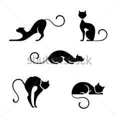 gato sobre fondo negro - Buscar con Google