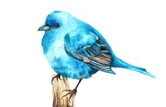 Bluebird Watercolor Illustration Print Birdie Blue Brown Feather Nature Home Decor. $25.00, via Etsy.