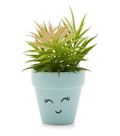 Mint Green Artificial Face Plant Pot  | New Look