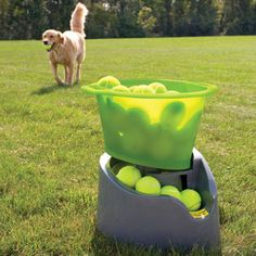 GoDogGo Remote Fetch - Automatic Tennis Ball Launcher for Dogs-this would have to have an automatic shut off after about 20 fetches...or Danner would run himself to death!