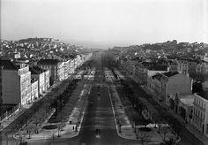Avenida da Liberdade, 1930.  Passados 55 anos desde que foi tirada esta fotografia, iniciei a minha carreira, ainda na Rua da Madalena. Estávamos em 1985.  Quase em 2015, a fazer 30 anos no mercado, a marca Maria João Bahia, tal como as paisagens lisboetas, tem-se modificado.  É tão bom olhar para trás e recordar.   #antique #mariajoaobahia #joias #joiasdeautor #jewelry #lisboaantiga #avenidadaliberdade #passeiopublico #monday #segundafeira #tesourinhos #antiguidades #memórias #fotosantigas