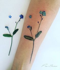Forget Me Nots Flower Tattoo  by Pis Saro botanical tattoo artist