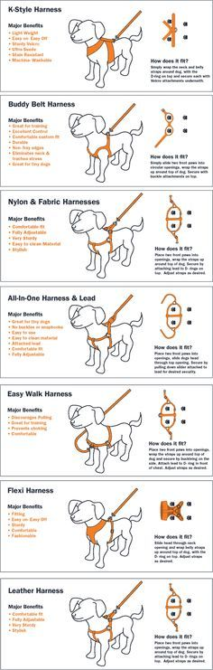Discusses different types of dog harnesses. We ended up getting the Easy Walk front-clip harness, and it was immediately helpful to squash the pulling.