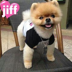 Jiff♥♥♥