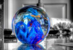 Color by OmegaMoth, via Flickr