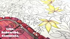ASMR Adult Coloring Secret Garden Bring Out Your Red No 9 Blended pencil...