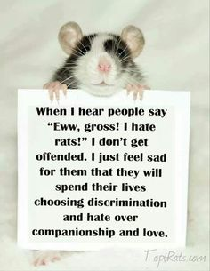 "When I hear people say ""Ewww, gross! I hate rats!"" I don't get offended. I just feel sad for them that they will spend their lives choosing discrimination and hate over companionship and love."