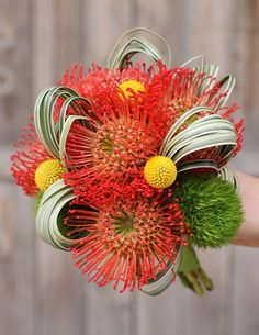 I know these are technically orange--but another really fun bouquet which we could dye in red-tones. The green trick dianthus mirrors grass of the ball field.just kind of out there and really fun. Modern Wedding Flowers, Flower Bouquet Wedding, Floral Wedding, Bridal Bouquets, Tropical Flowers, Exotic Flowers, Luxury Flowers, Orange Flowers, Art Floral