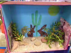 Make a diorama of your favorite animal habitat.