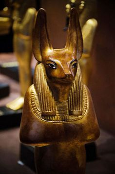 ♔ Treasures of King Tutankhamun Anubis is the jackal ( or possibly a tamed wild dog) seen as a protector and companion. Watching over the feather weighing in the afterlife and then when a soul is judged good, he becomes a guide into heaven, (or if bad. Egyptian Mythology, Ancient Egyptian Art, Ancient History, Ancient Ruins, European History, Ancient Greece, American History, Anubis, Old Egypt