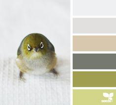 Color Creature via @designseeds