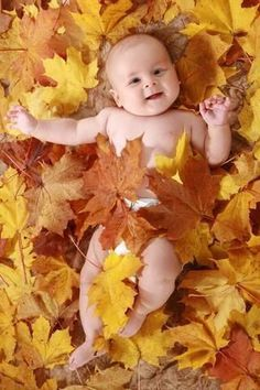 New baby photography autumn sweets ideas Baby Pumpkin Pictures, Halloween Baby Pictures, Fall Baby Pictures, Baby Girl Photos, Baby In Pumpkin, Fall Photos, Newborn Halloween, Baby First Halloween, Thanksgiving Pictures