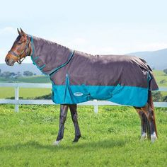 This Medium Weight Weatherbeeta Is A Really Versatile Rug And Best Er Make Sure