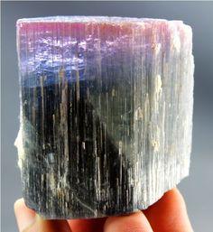 158 Gram Jumbo Size Damage Free Multi Color ELBAITE TOURMALINE Crystal @ Paprok