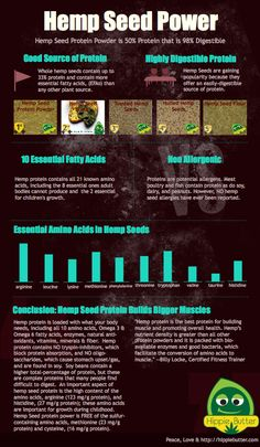 Hemp Seed Power Info-Graphic by Hippie Butter