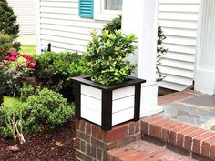 Upscale Pot: 20 Ways To Primp Your Planters